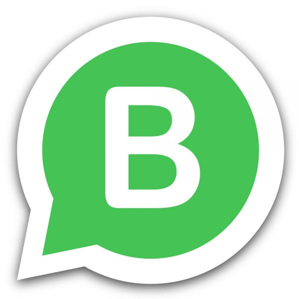 curso de whatsapp business
